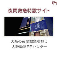 夜間救急 動物病院 大阪動物ERセンター